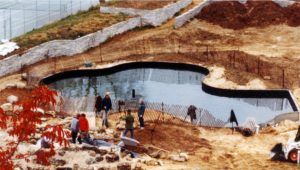 Constructing the Pond