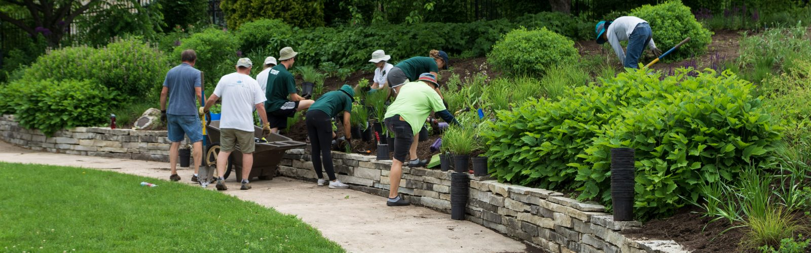 Staff with Volunteers in New American Garden