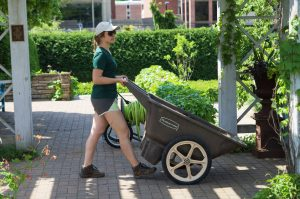 Staff with Wheelbarrow