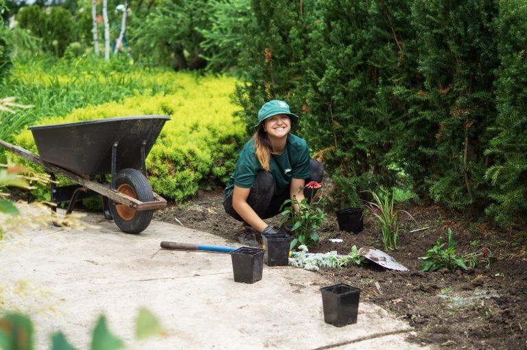 Intern Planting Flowers