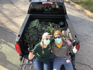 Elin and her spouse moving plants