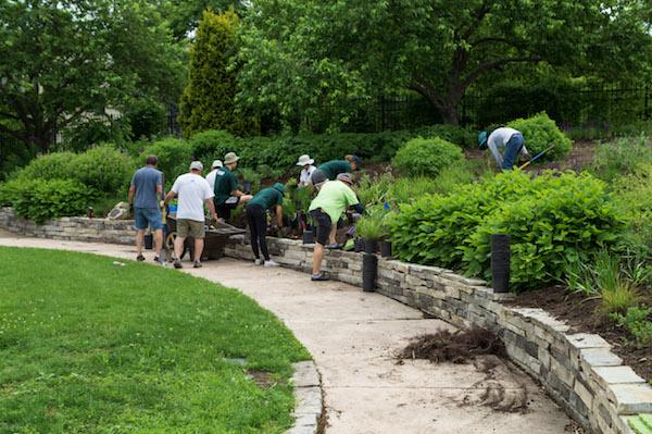 Volunteers in New American Garden